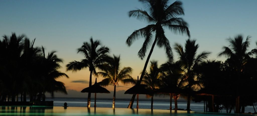 verano playa palmeras